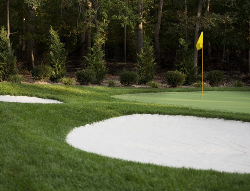 Backyard Putting Greens – What are the Benefits?